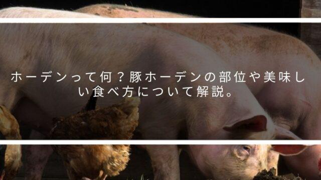 豚ホーデン