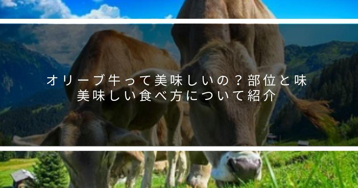 オリーブ牛